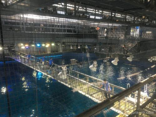 美ら海水族館 黒潮探検