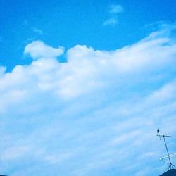 空とアンテナ