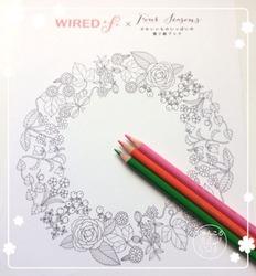 WIREDfのぬりえと色鉛筆